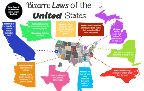 What happens if you Google crazy state laws