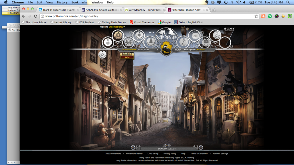 Sabrina Werbys (12) screen while playing Pottermore, Rowlings latest installment of the Harry Potter franchise. Pottermore is a website that allows fans of the novel series to experience another layer of the intricate world created through the books.