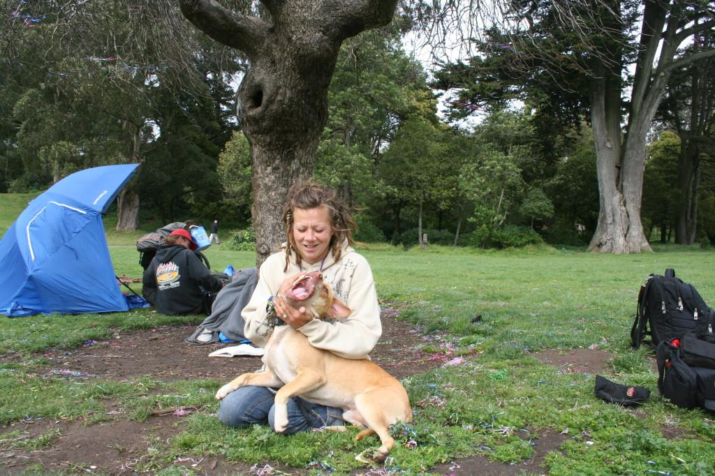 Controversy erupts over police shooting of pit bull in San Franciscos Golden Gate Park