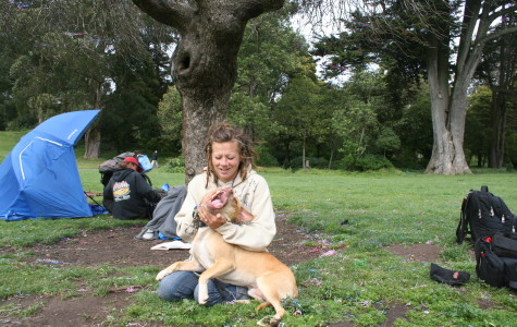 Controversy erupts over police shooting of pit bull in San Francisco's Golden Gate Park