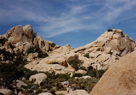 Annual junior trip to Joshua Tree coming to an end