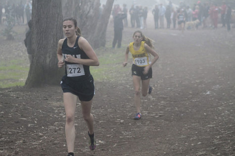 Girls cross country team ends historic season, finishes fifth in state