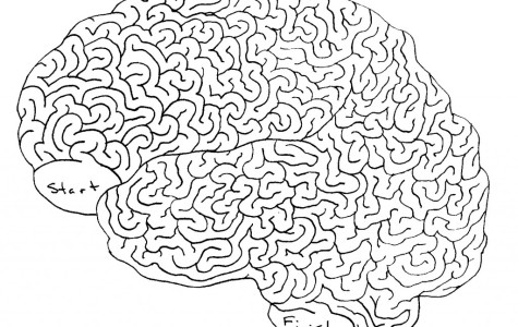 Student brains are more than a science experiment and a standard scale