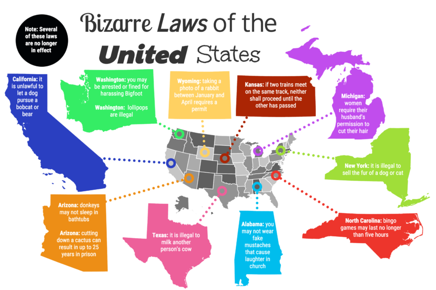 Infographic showing some of the strange state laws in the US, made by Kian Nassre, Head of Infographics.