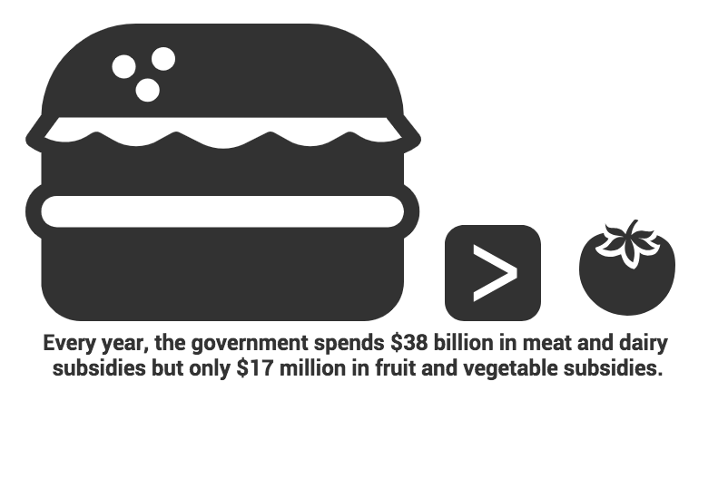 Infographic comparing meat industry subsidies to fruit and vegetable industry subsidies. Source: Meatanomics. Infographic by Kian Nassre, Web Editor.
