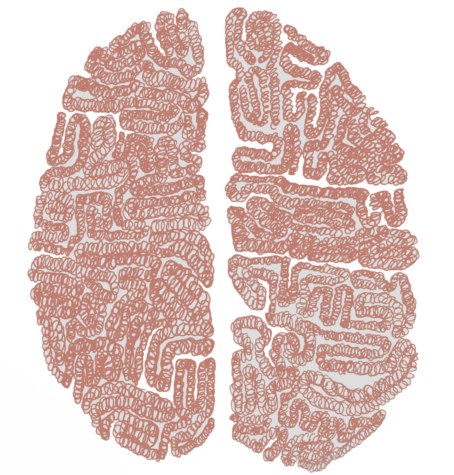 Illustration of a human brain by Sally Cobb, staff writer.