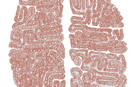 Illustration of a human brain by Sally Cobb, staff writer.