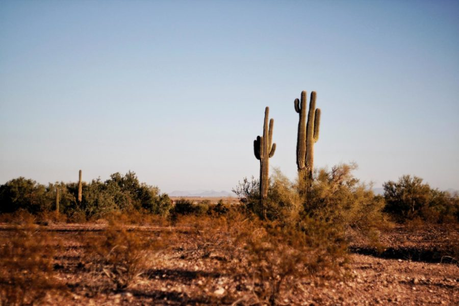 Royalty free photo of the deserts in the US-Mexico border, courtesy of Pexals