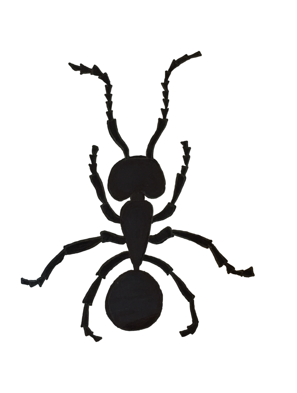 Illustration of an argentine ant by Tikloh Bruno-Basaing, Sports Editor.